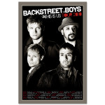 Backstreet Boys This Is Us 2010 Tour Litho