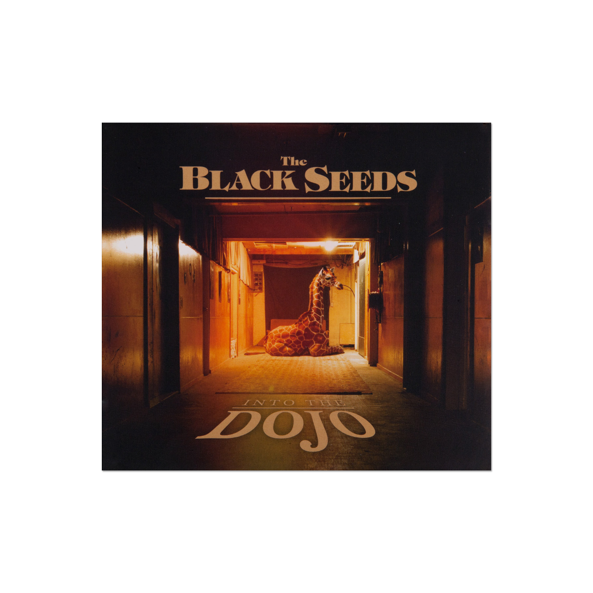The Black Seeds - Into The Dojo Digital Download