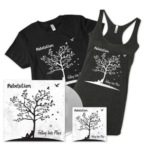 Falling into Place CD + LP + MP3 + Shirt