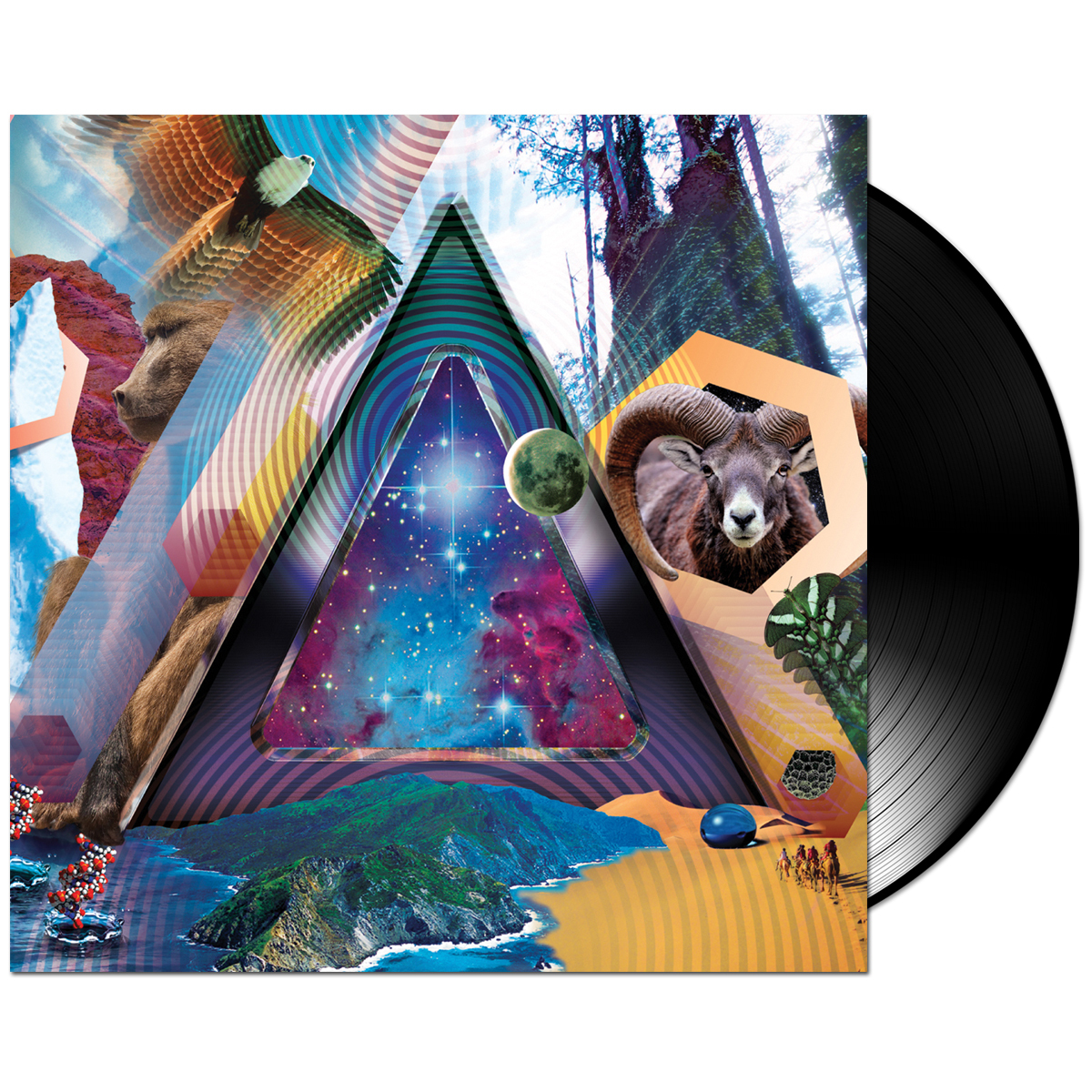 311 – Universal Pulse LP