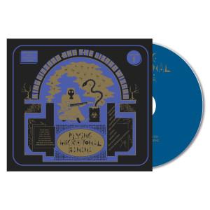 """""""Flying Microtonal Banana"""" CD"""