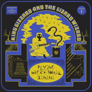 """Flying Microtonal Banana"" Digital Album"