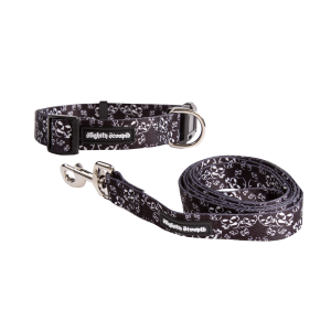 Large Dog Collar and Large Leash Bundle