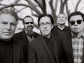 Los Lobos MP3 Downloads