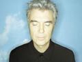 David Byrne MP3 Downloads