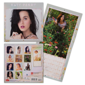 Katy Perry 2015 Mini 7x7 Calendar