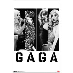 Lady Gaga Photo Bars Poster