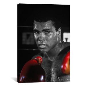 "Ali in Training Canvas Print 28"" x 18"""