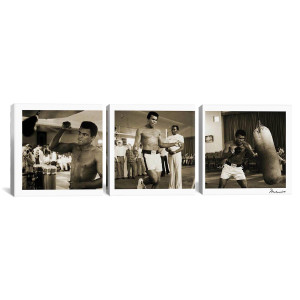"Ali Training in Action 3 pc. Canvas Print 16"" x 48"""