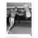 Ali Punching Bag Print