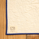 1791 George Washington Life Guard Flag Quilt Kit