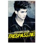 Adam Lambert Runaway Poster