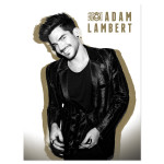 Adam Lambert Gold Litho