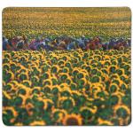 Tour De France Sunflowers Mouse Pad
