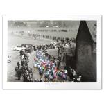 Paris-Roubaix Poster