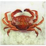 Mariachi El Bronx (I) CD