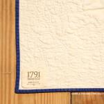 1791 George Washington Life Guard Flag Quilt Kit