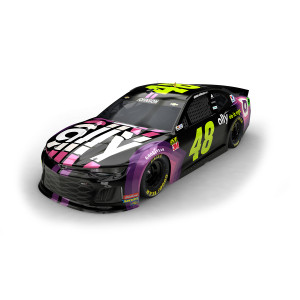 Jimmie Johnson 2019 NASCAR Ally HO 1:24 Die-Cast
