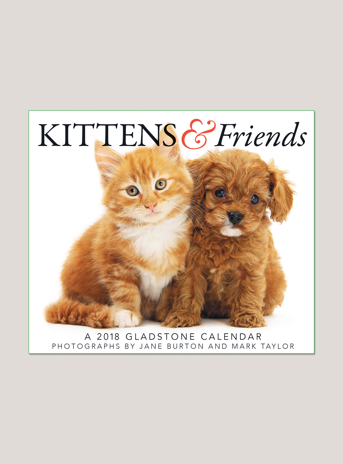 "2018 Kittens & Friends 5.25"" x 4.25"" Page Per Day Calendar"