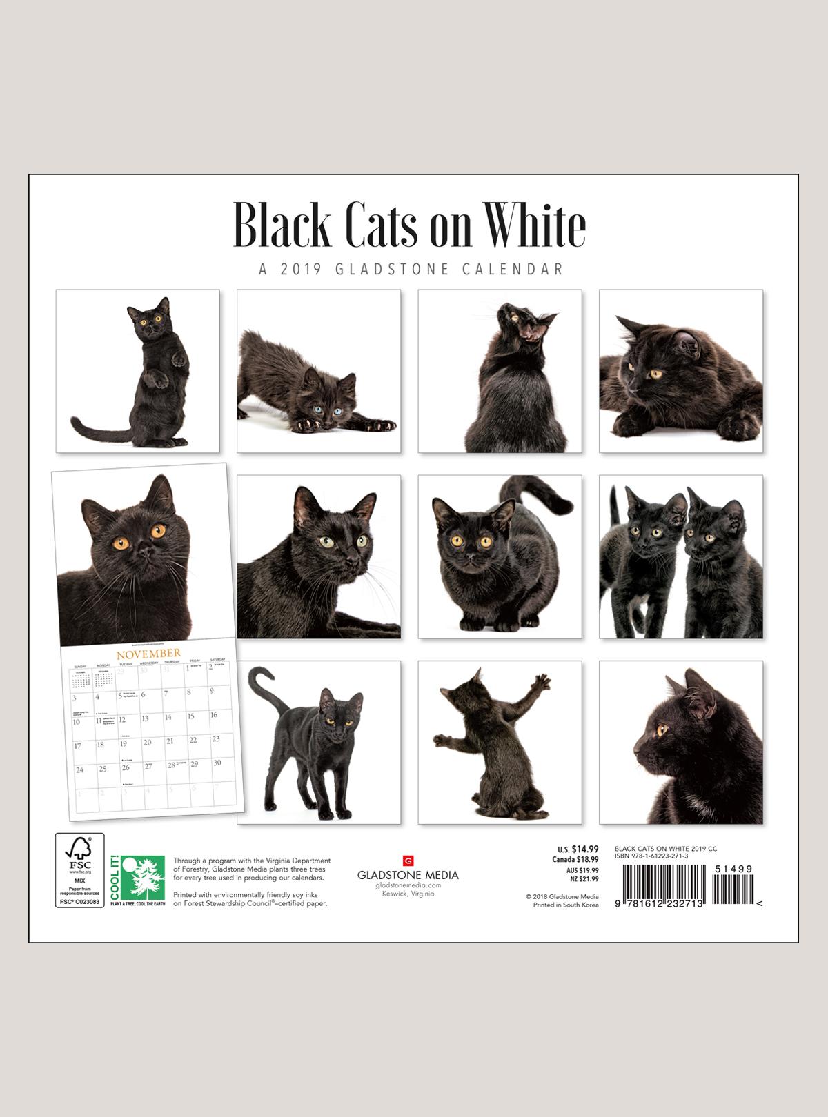 "2019 Black Cats on White 12"" x 12"" WALL CALENDAR"