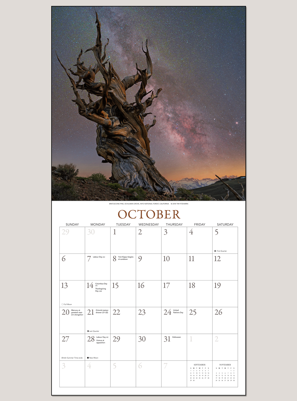 "2019 A Galaxy of Stars 12"" x 12"" WALL CALENDAR"