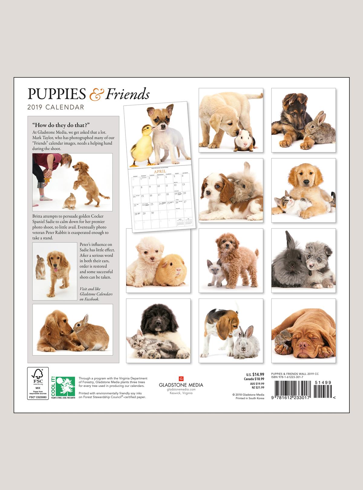 """2019 Puppies & Friends 12"""" x 12"""" WALL CALENDAR"""