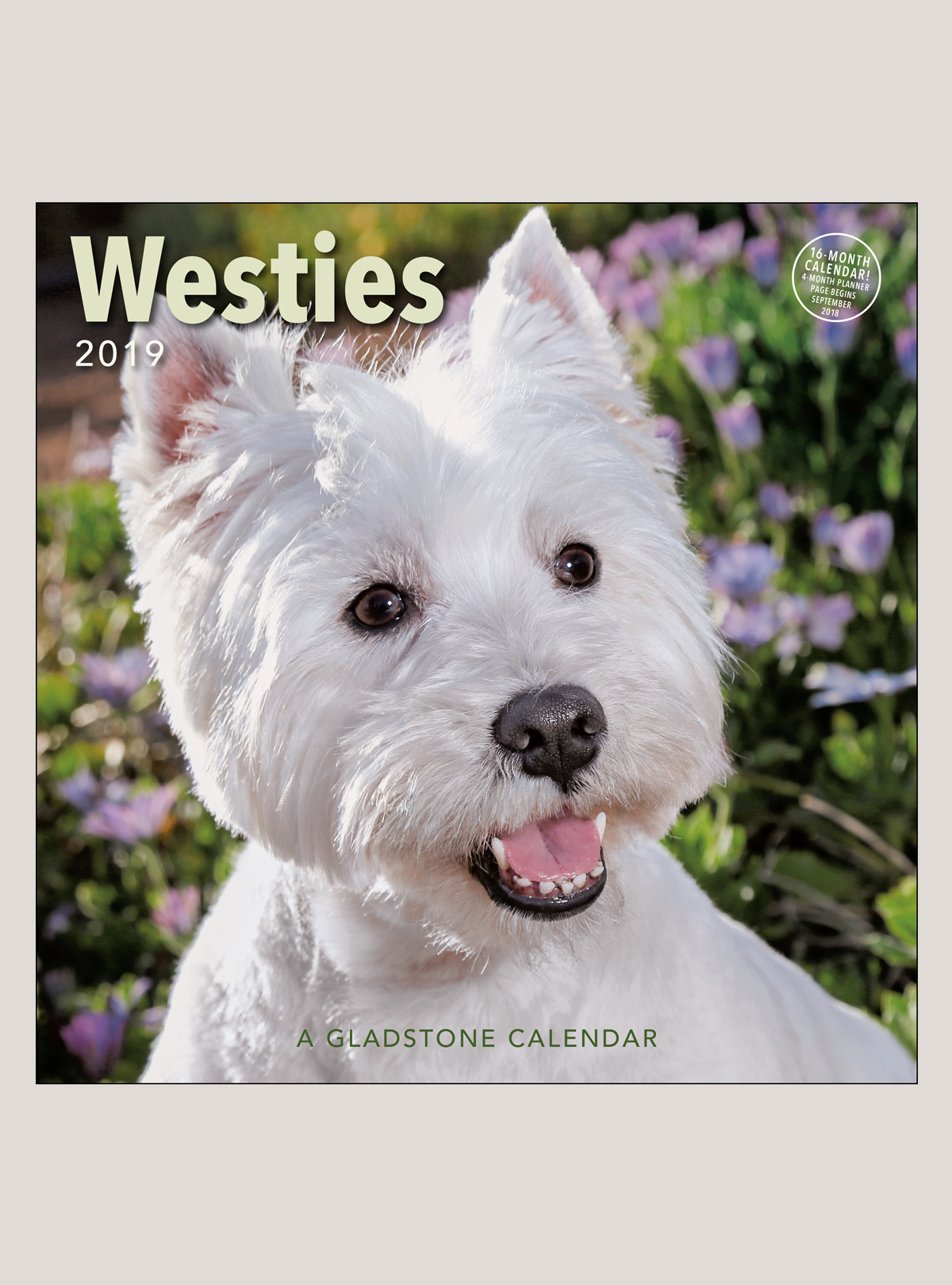 "2019 Westies 12"" x 12"" WALL CALENDAR"