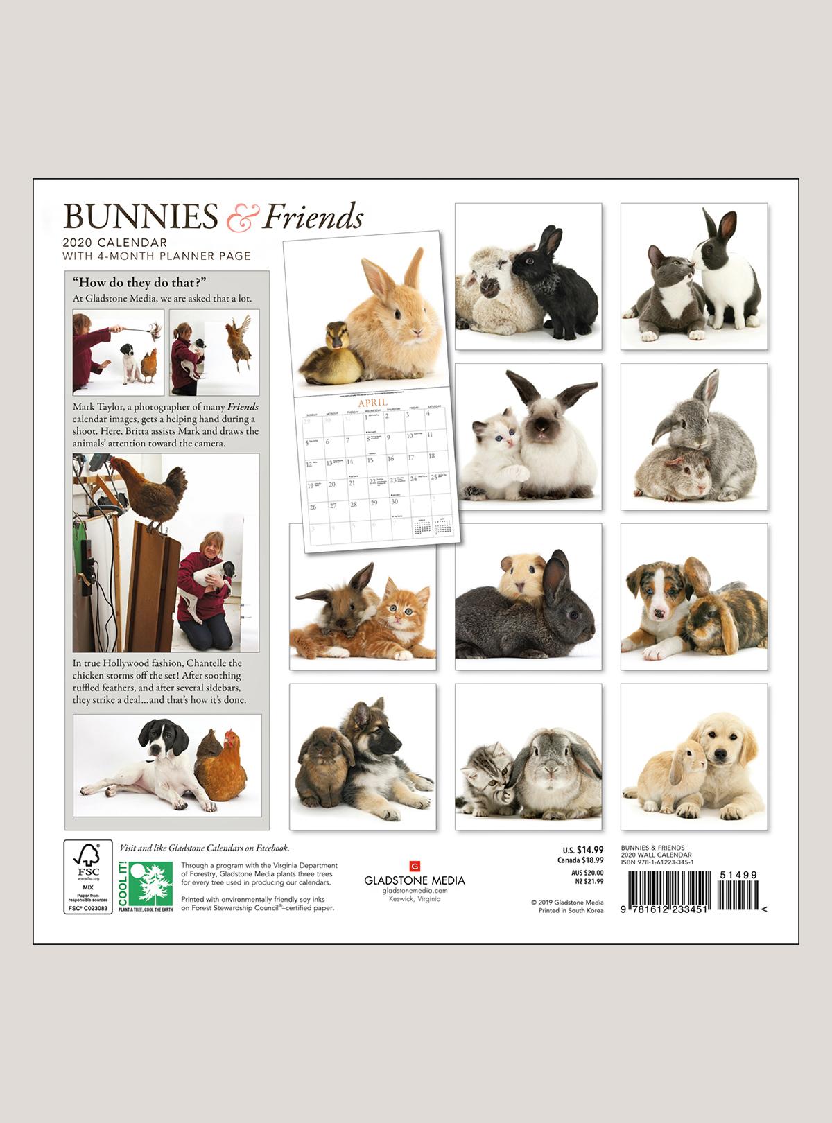 """2020 Bunnies & Friends 12"""" x 12"""" WALL CALENDAR"""