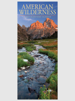 "American Wilderness 2017 <br/> 9"" x 22"" Vertical Calendar"