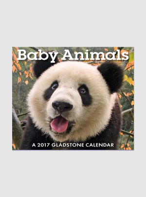 "Baby Animals 2017 <br/> 5.25"" x 6.125"" Page Per Day Calendar"
