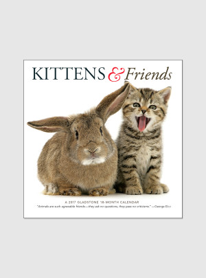 "Kittens & Friends 2017 <br/> 7"" x 7"" Mini Calendar"