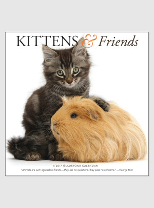 "Kittens & Friends 2017 <br/> 12"" x 12"" Wall Calendar"
