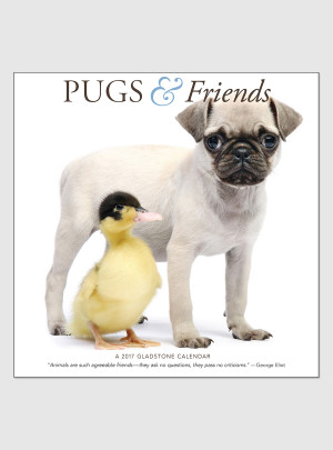 "Pugs & Friends 2017 <br/> 12"" x 12"" Wall Calendar"