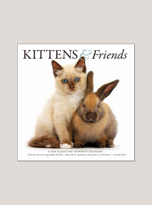 "2018 Kittens & Friends 7"" x 7"" Mini Calendar"