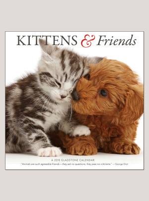 "2018 Kittens & Friends 12"" x 12"" Wall Calendar"