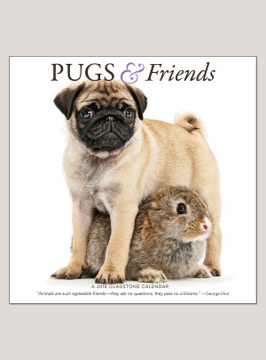 "2018 Pugs & Friends 12"" x 12"" Wall Calendar"