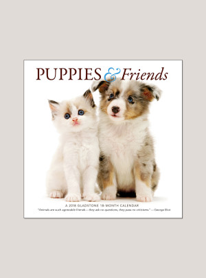 "2018 Puppies & Friends 7"" x 7"" Mini Calendar"