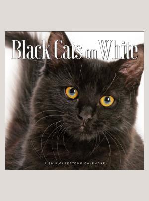 "2019 Black Cats on White 12"" x 12"" WALL CALENDAR"