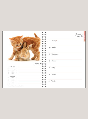 "2019 Kittens & Friends 6"" x 8.25"" ENGAGEMENT CALENDAR"