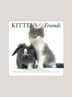 "2019 Kittens & Friends 7"" x 7"" MINI WALL CALENDAR"