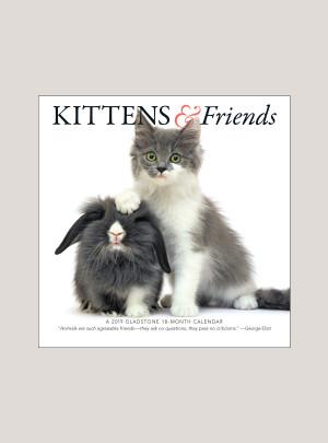 """2019 Kittens & Friends 7"""" x 7"""" MINI WALL CALENDAR"""