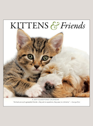 "2019 Kittens & Friends 12"" x 12"" WALL CALENDAR"