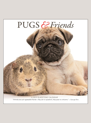 "2019 Pugs & Friends 12"" x 12"" WALL CALENDAR"