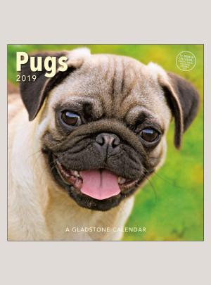 """2019 Pugs 12"""" x 12"""" WALL CALENDAR"""