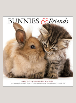 "2020 Bunnies & Friends 12"" x 12"" WALL CALENDAR"