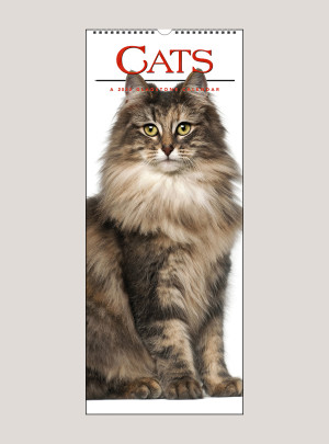 "2020 Cats 9"" x 22"" VERTICAL WALL CALENDAR"