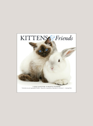 "2020 Kittens & Friends 7"" x 7"" MINI WALL CALENDAR"
