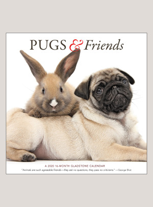 "2020 Pugs & Friends 12"" x 12"" WALL CALENDAR"