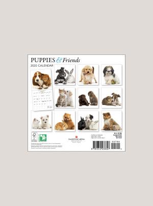 """2020 Puppies & Friends 7"""" x 7"""" MINI WALL CALENDAR"""