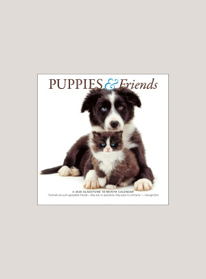 "2020 Puppies & Friends 7"" x 7"" MINI WALL CALENDAR"